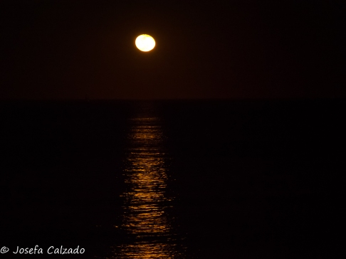 Estela de luna