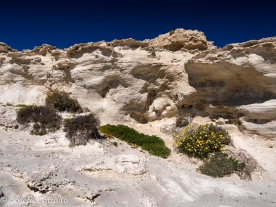 Detalle duna fosilizada