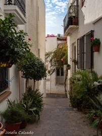 Calle Rosales