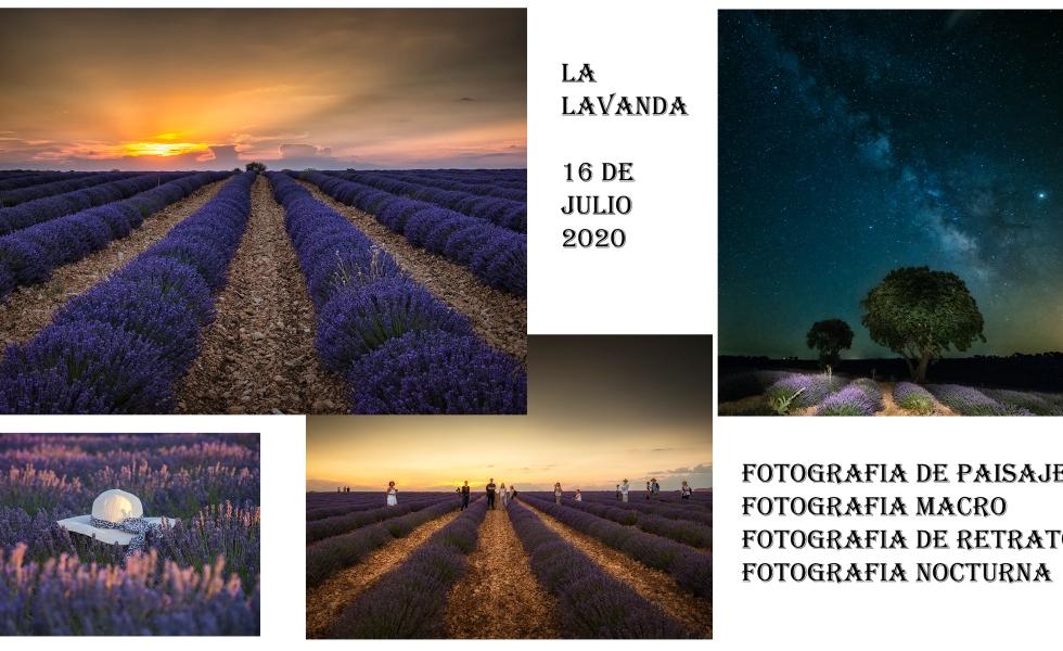 Taller de fotografía de paisaje, macro, retrato, nocturnas