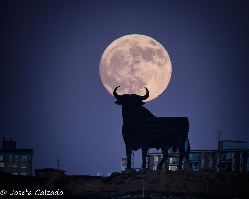 La luna y el toro II